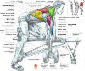 onearm_dumbbell_row_07