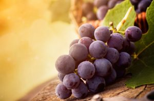 food___berries_and_fruits_and_nuts_bunch_of_red_grapes_087539_